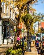 加拿大新移民获得心理健康支持的方法和资源列表
